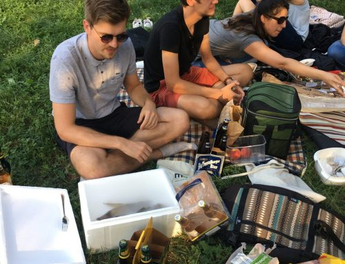 With some delay: Impressions from our summer picnic in the Viennese Prater.